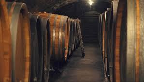 knoll cellar