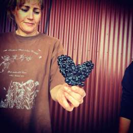 tongue-in-groove-pinot-noir