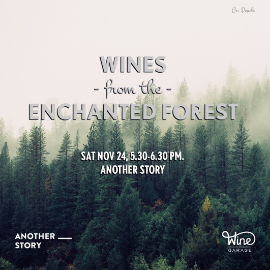 WG Enchanted Wines Workshop Nov 24 2018