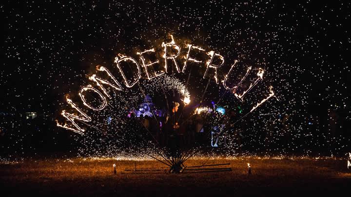 wonderfruit image