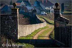Burgundy gate (Bergmans Bourgogne)